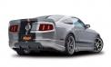 Cervinis 2218 2010-2014 Mustang C-Series Ducktail Spoiler