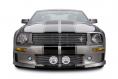 Cervinis 7026 05-09 Mustang Lower Billet Grille with Fog Lights