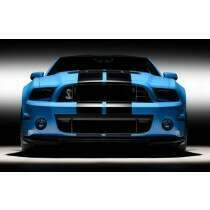 Ford 2013-2014 Shelby GT500 Upper and Lower Grill Set