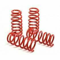 H&R 2007-2014 Shelby GT500 Race Spring Set